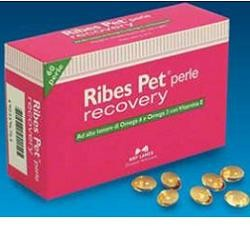 RIBES PET RECOVERY BLISTER 60 PERLE